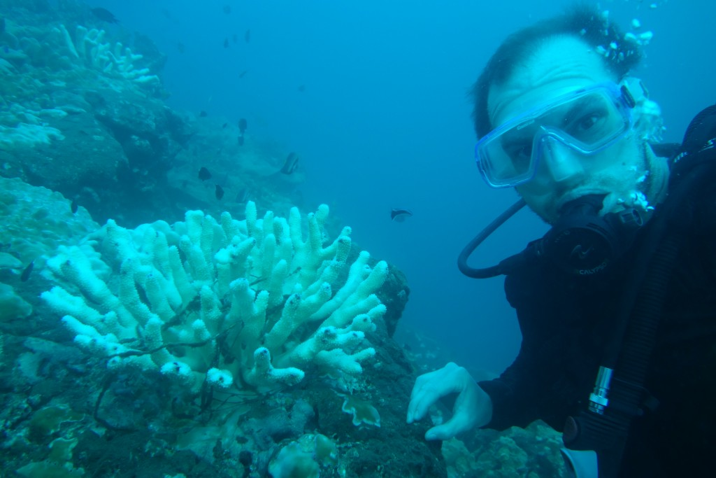 Antoine Collin on the Sen2Coral field campaign