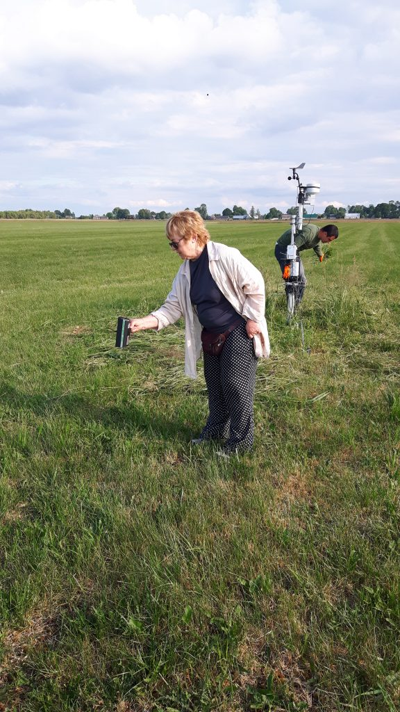Taking measurements on the grassland site to support the Sentinel-1 mission. (ESA)