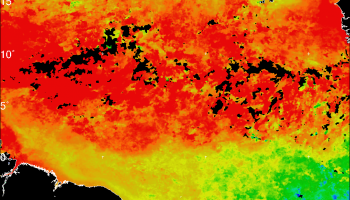 Sea-surface temperature composite on 11–17 October 2016.