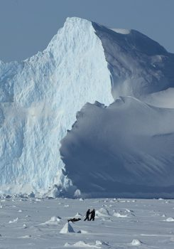 Explorers call it the last great wilderness on Earth: Antarctica. Credits: BAS