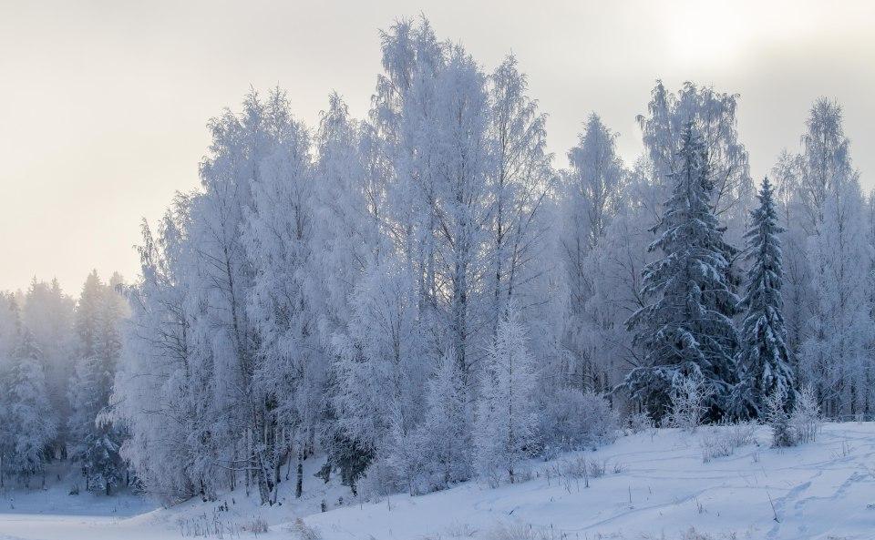 Snowy Plesetsk. (ESA)