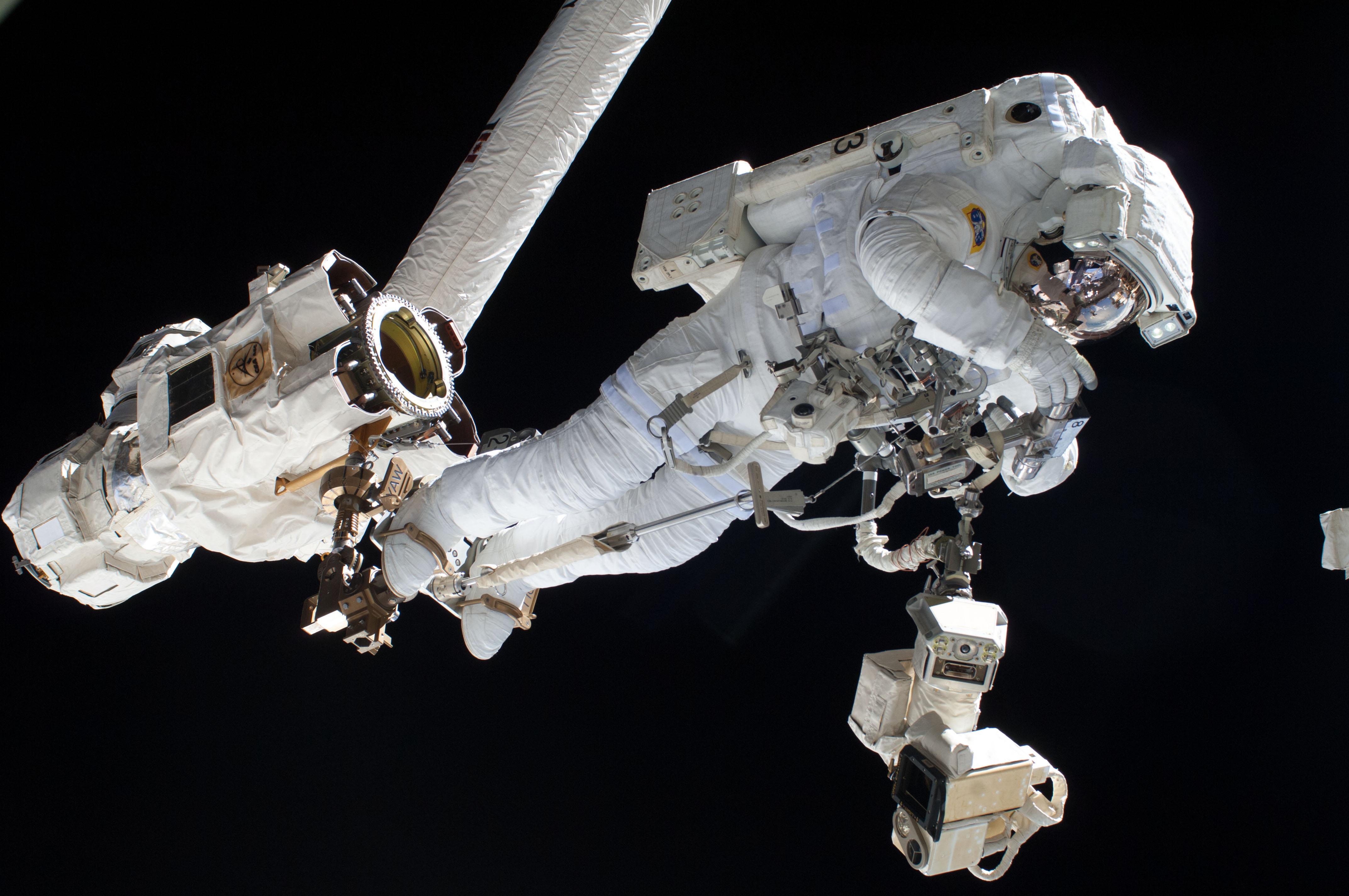 Luca sur le Canadarm (Crédits : NASA)