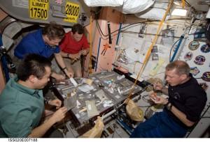 Mealtime in Unity Credits: NASA