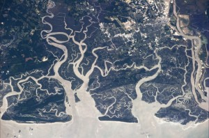 Forks in a river over Giorgia. Credit: ESA/NASA