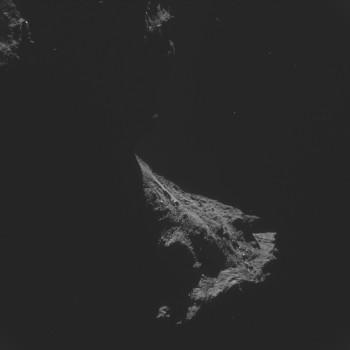 ESA_Rosetta_NAVCAM_141102_D