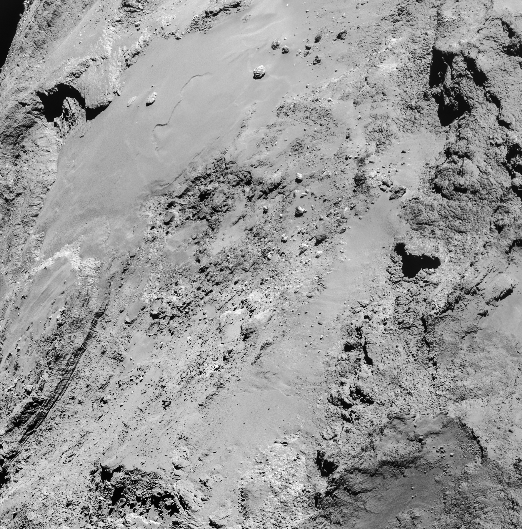 CometWatch 14 February – flyby special – Rosetta – ESA's ...