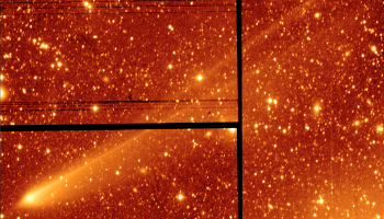 Image of 67P/C-G obtained with the 2.5m Isaac Newton Telescope on La Palma on the morning of 19 January 2016. The picture was taken through a red filter; the apparent colour has been added to help pick out faint structures by eye. The tail extends 0.5 degrees from the nucleus (the apparent size of the full moon) before reaching the edge of the image, corresponding to a minimum length of 2.2 million km. Note that the black lines are gaps between CCDs in the array (the camera has 4 CCDs to cover half a degree).Credit: Alan Fitzsimmons / Isaac Newton Telescope