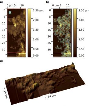 Atomic force microscope topographic images of MIDAS particle E, a loosely packed 'fluffy' aggregate comprising many grains. (a) Overview image with a pixel resolution of 210 nm and a colour scale representing height. b) Sub-units (grains) of the particle detected at the resolution of the instrument are outlined. (c) 3D image of the particle corresponding to the area covered by the red outline in (a) with two times height exaggeration to aid visualisation.