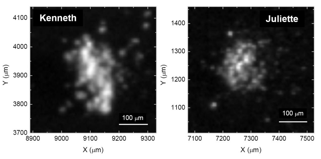 Optical image of two of the dust grains collected and analysed by COSIMA, named Kenneth and Juliette, which show the signature of carbon-based organics. They were collected in May and October 2015 respectively.