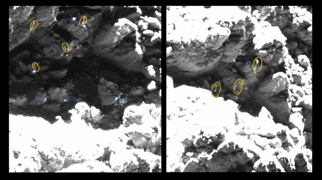 "Two different images taken on 25 May 2016 with similar ""ice"" features highlighted as those of the reflected parts of the red candidate. Credits: images: ESA/Rosetta/MPS for OSIRIS Team MPS/UPD/LAM/IAA/SSO/INTA/UPM/DASP/IDA; Lander search analysis: L. O'Rourke"