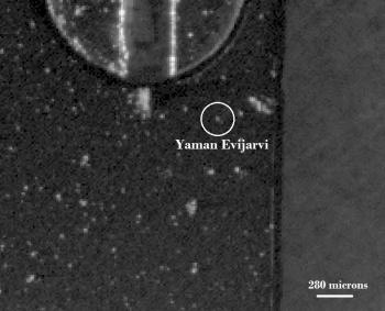 yaman_evijarvi3