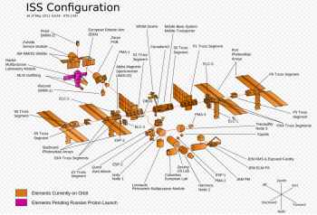 Space Station structure. Credits: Wikimedia