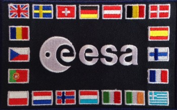 Older 20-flag ESA patch